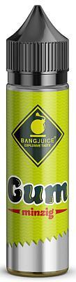 Bang Juice - Aroma Gum minzig