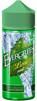 Sique Berlin - Evergreen - Aroma Lime Mint 30ml