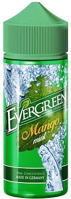 Sique Berlin - Evergreen - Aroma Mango Mint 30ml