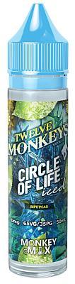 Twelve Monkeys ? Ice Age - Circle of Life