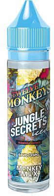 Twelve Monkeys - Ice Age - Jungle Secrets